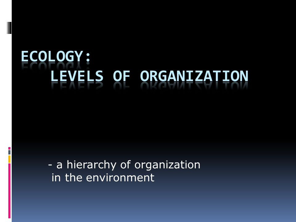 - a hierarchy of organization in the environment