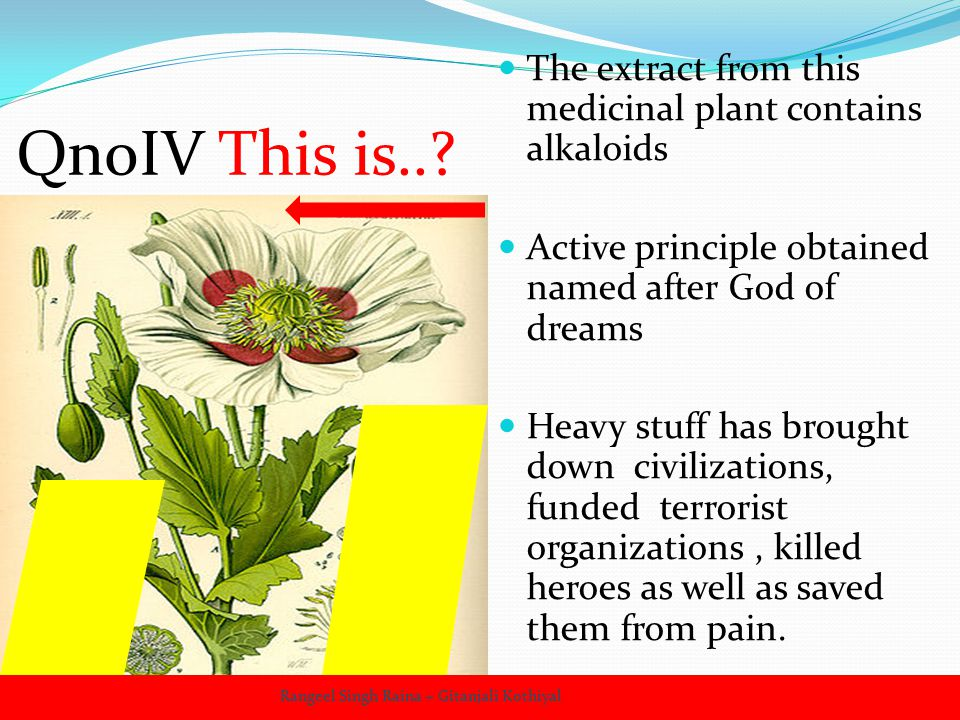 QnoIV This is..? The extract from this medicinal plant contains alkaloids Active principle obtained named after God of dreams Heavy stuff has brought