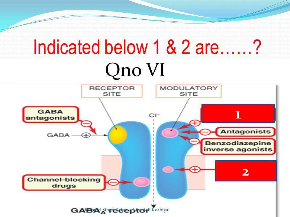 Indicated below 1 & 2 are……? Qno VI 1 2 Rangeel Singh Raina + Gitanjali Kothiyal