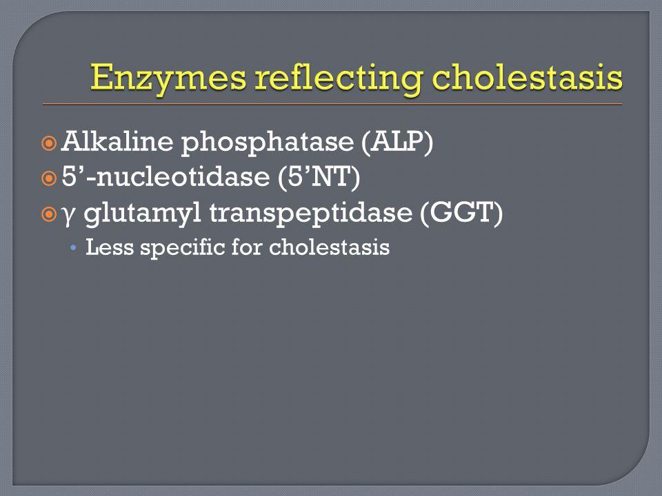  Alkaline phosphatase (ALP)  5'-nucleotidase (5'NT)  γ glutamyl transpeptidase (GGT) Less specific for cholestasis