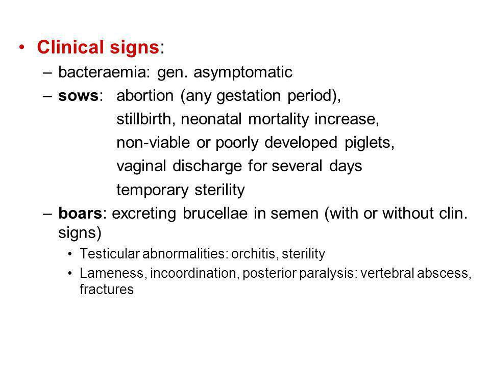 Clinical signs: –bacteraemia: gen.