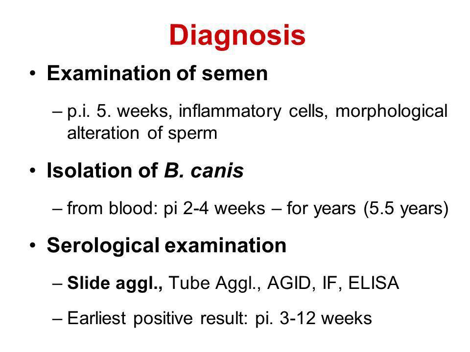 Diagnosis Examination of semen –p.i.5.