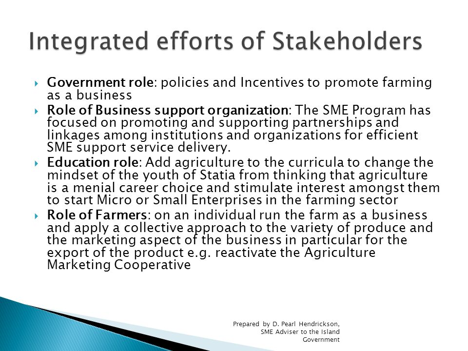  Government role: policies and Incentives to promote farming as a business  Role of Business support organization: The SME Program has focused on promoting and supporting partnerships and linkages among institutions and organizations for efficient SME support service delivery.