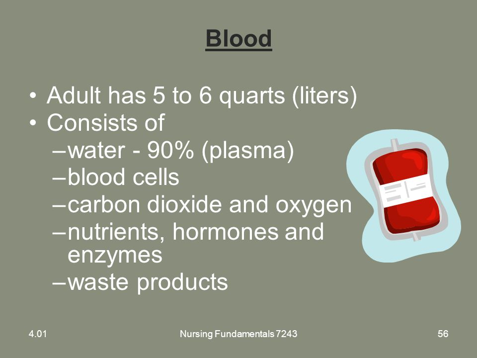 Nursing Fundamentals 724356 Blood Adult has 5 to 6 quarts (liters) Consists of –water - 90% (plasma) –blood cells –carbon dioxide and oxygen –nutrient