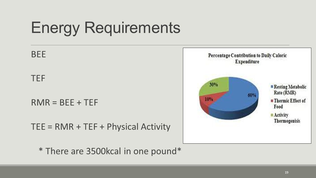 Energy Requirements BEE TEF RMR = BEE + TEF TEE = RMR + TEF + Physical Activity * There are 3500kcal in one pound* 19
