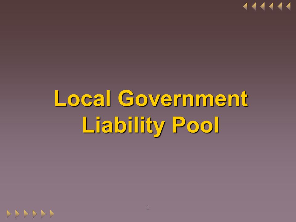 1 Local Government Liability Pool