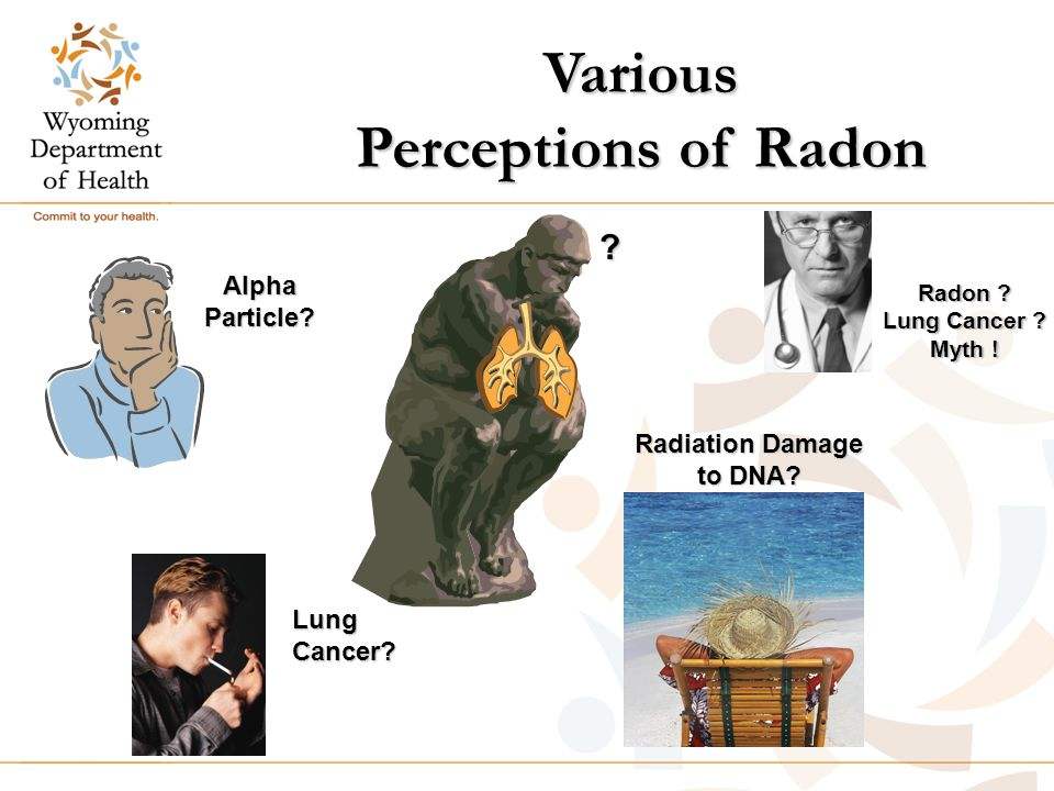 Various Perceptions of Radon AlphaParticle. Radiation Damage to DNA.