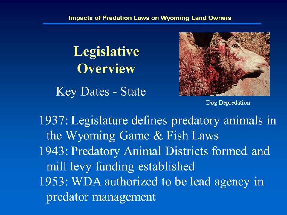 Impacts of Predation Laws on Wyoming Land Owners Legislative Overview Key Dates - State 1937: Legislature defines predatory animals in the Wyoming Gam