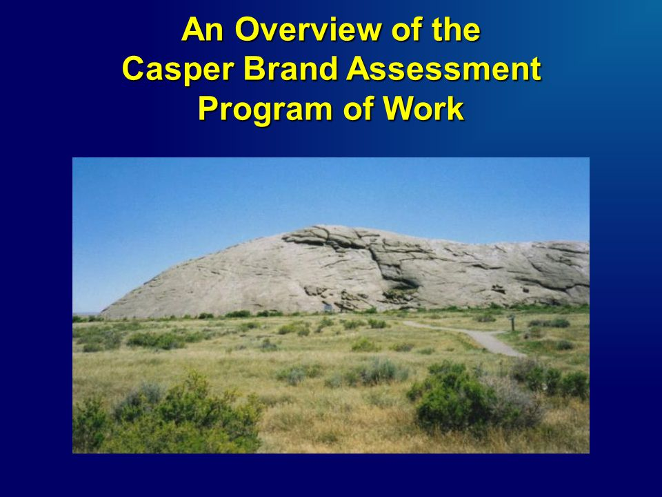 An Overview of the Casper Brand Assessment Program of Work