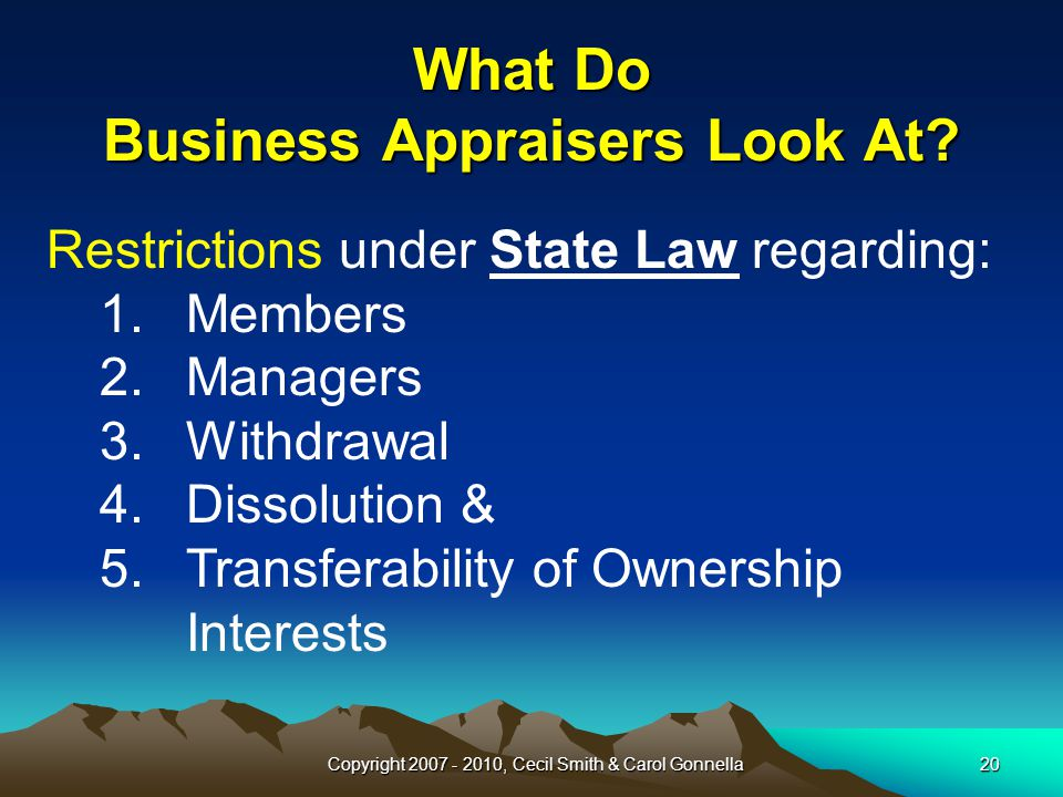 Copyright 2007 - 2010, Cecil Smith & Carol Gonnella20 What Do Business Appraisers Look At.