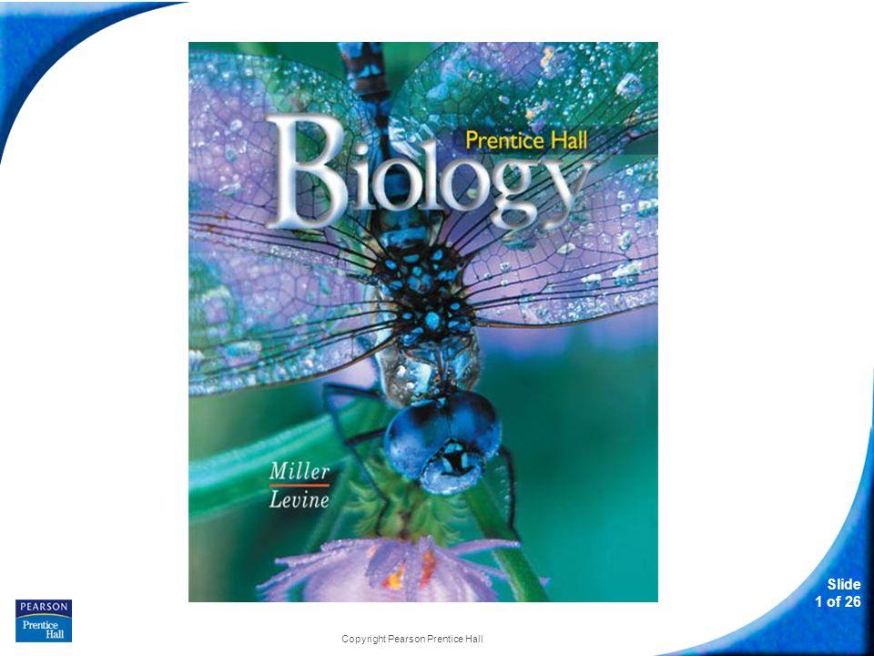 12-5 Gene Regulation Slide 12 of 26 Copyright Pearson Prentice Hall Eukaryotic Gene Regulation How are most eukaryotic genes controlled?