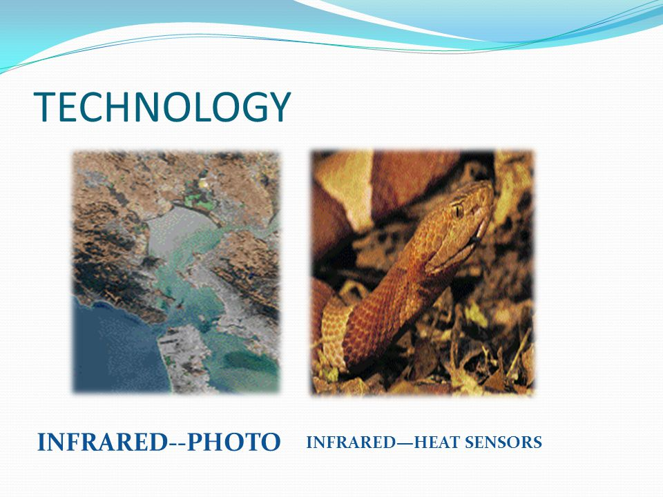 TECHNOLOGY INFRARED--PHOTO INFRARED—HEAT SENSORS