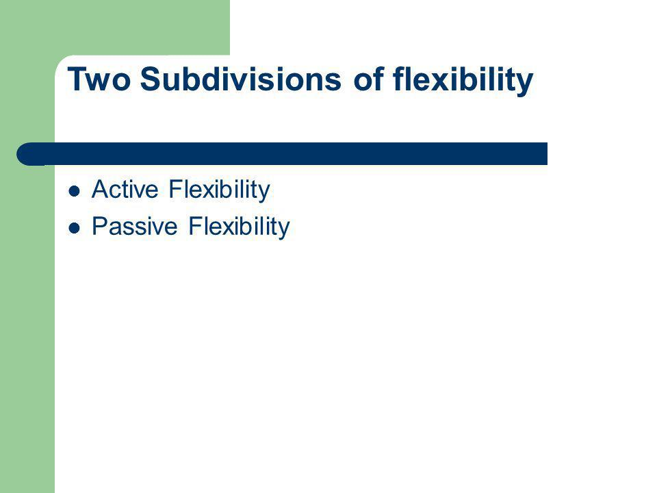 Active Flexibility Passive Flexibility Two Subdivisions of flexibility
