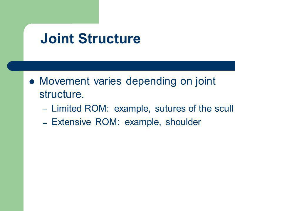 Movement varies depending on joint structure. – Limited ROM: example, sutures of the scull – Extensive ROM: example, shoulder Joint Structure