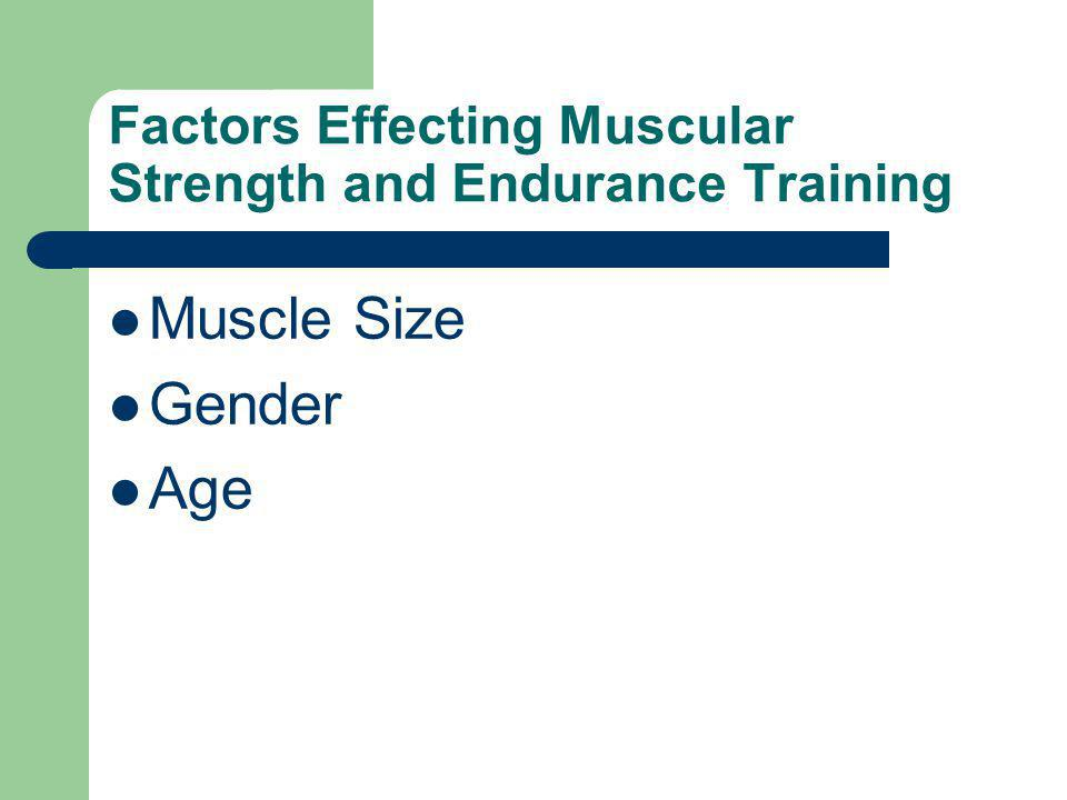 Factors Effecting Muscular Strength and Endurance Training Muscle Size Gender Age