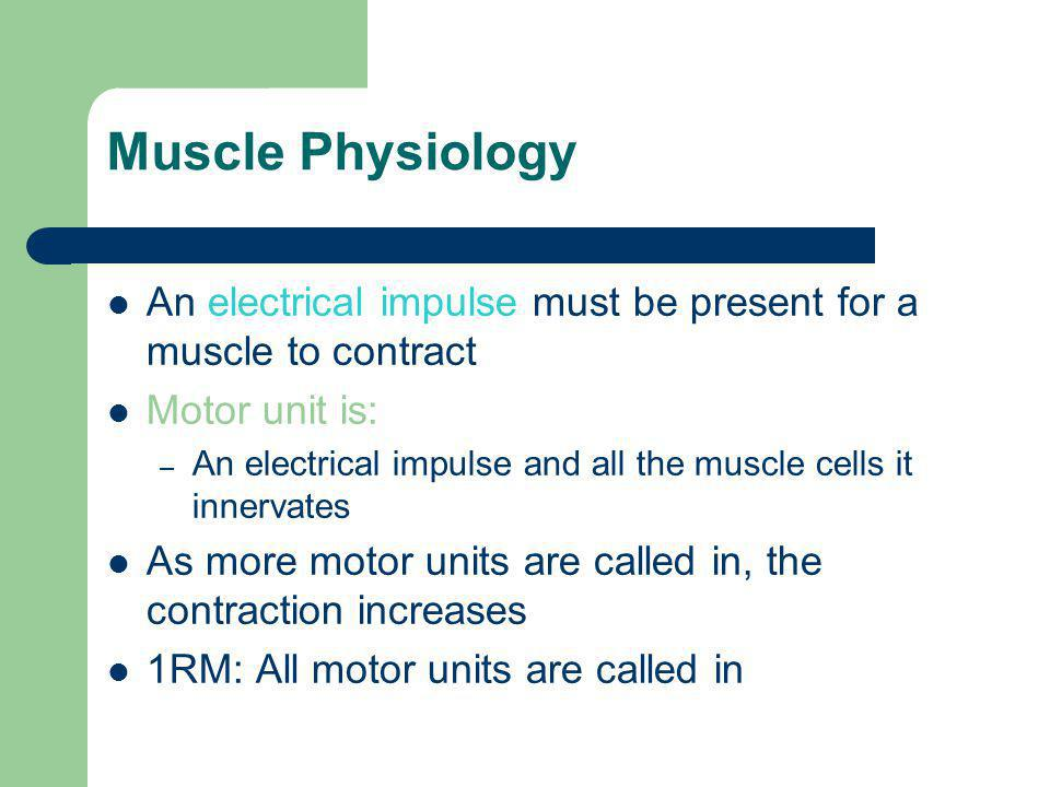 Muscle Physiology An electrical impulse must be present for a muscle to contract Motor unit is: – An electrical impulse and all the muscle cells it innervates As more motor units are called in, the contraction increases 1RM: All motor units are called in