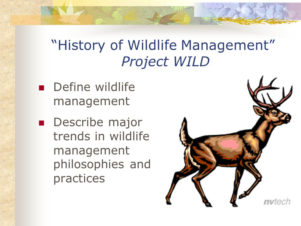 History of Wildlife Management Project WILD Define wildlife management Describe major trends in wildlife management philosophies and practices