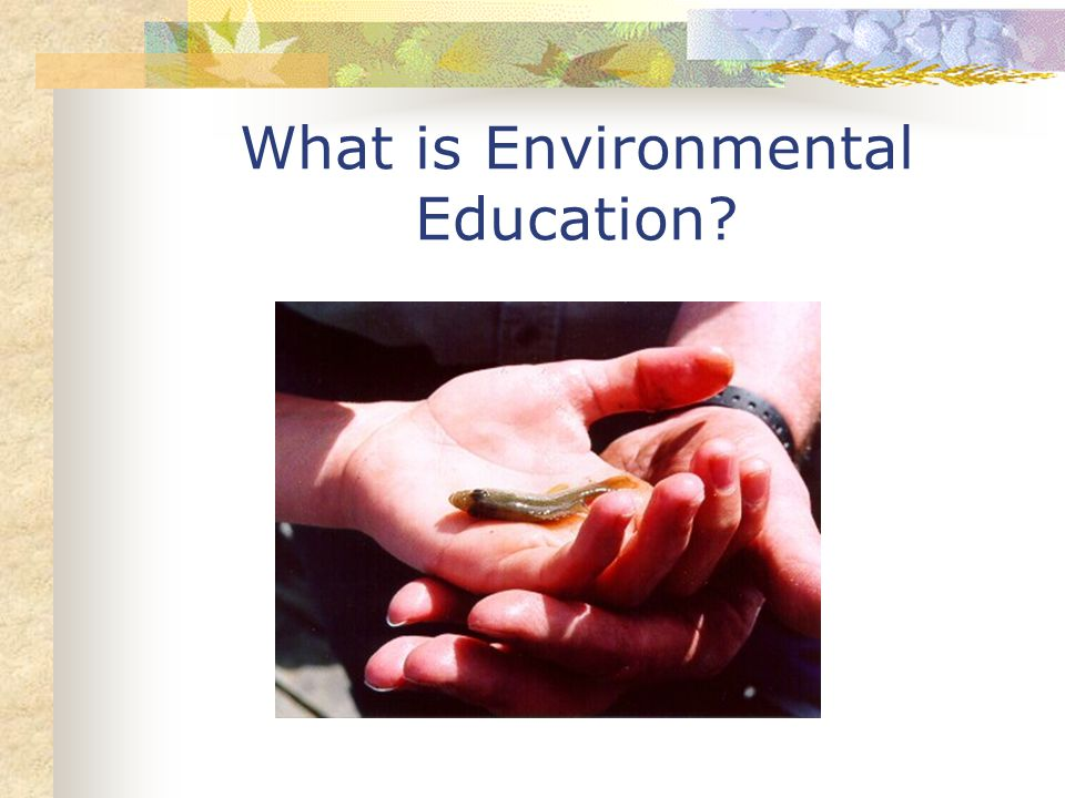 What is Environmental Education?