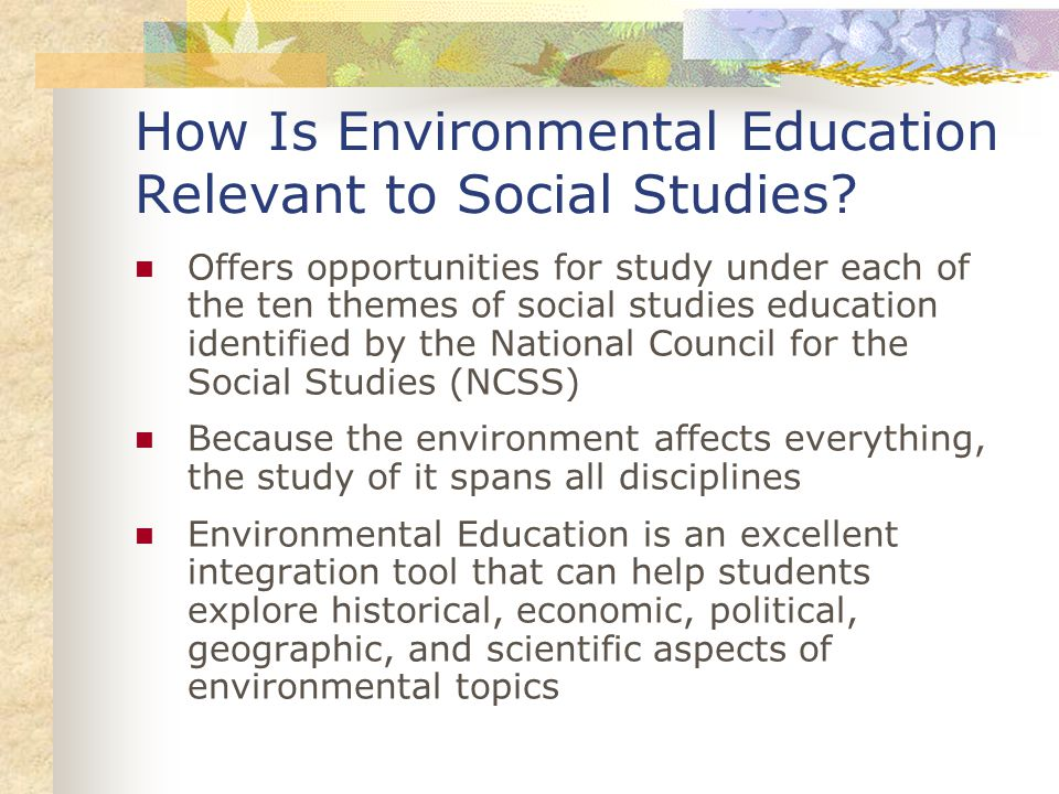 Ten Themes of Social Studies Education (NCSS) Culture and Cultural Diversity Time, Continuity, and Change People, Places, and Environments Individual Development and Identity Individuals, Groups, and Institutions