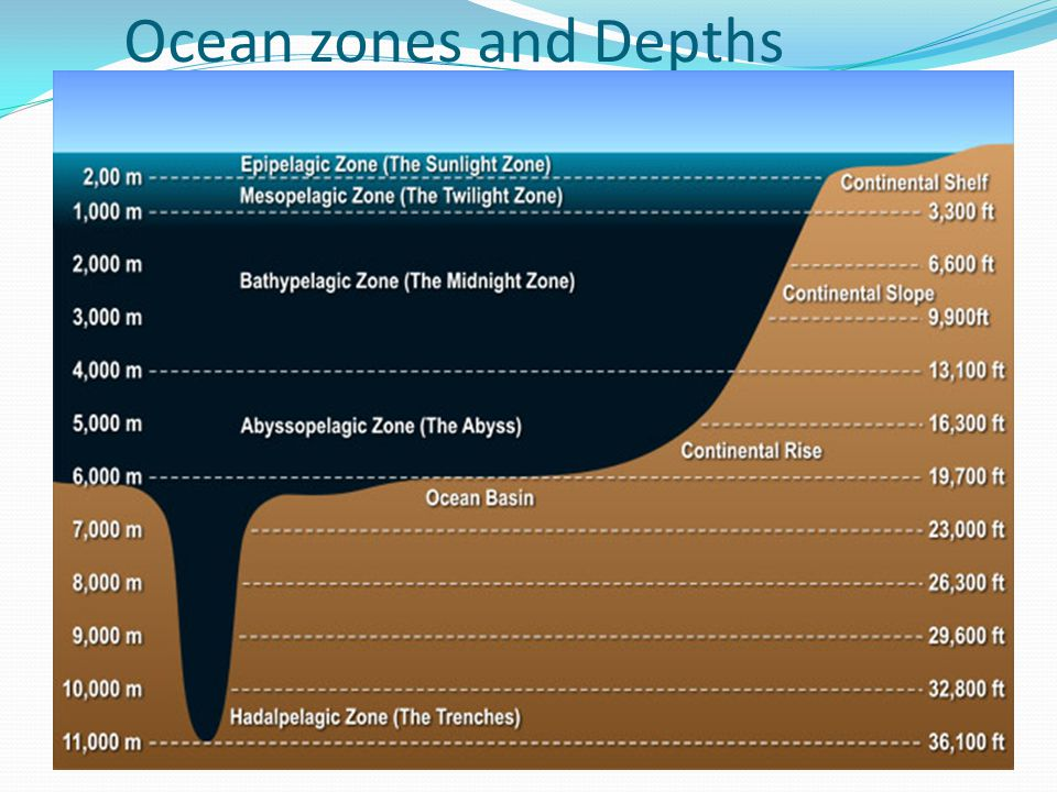 Ocean zones and Depths