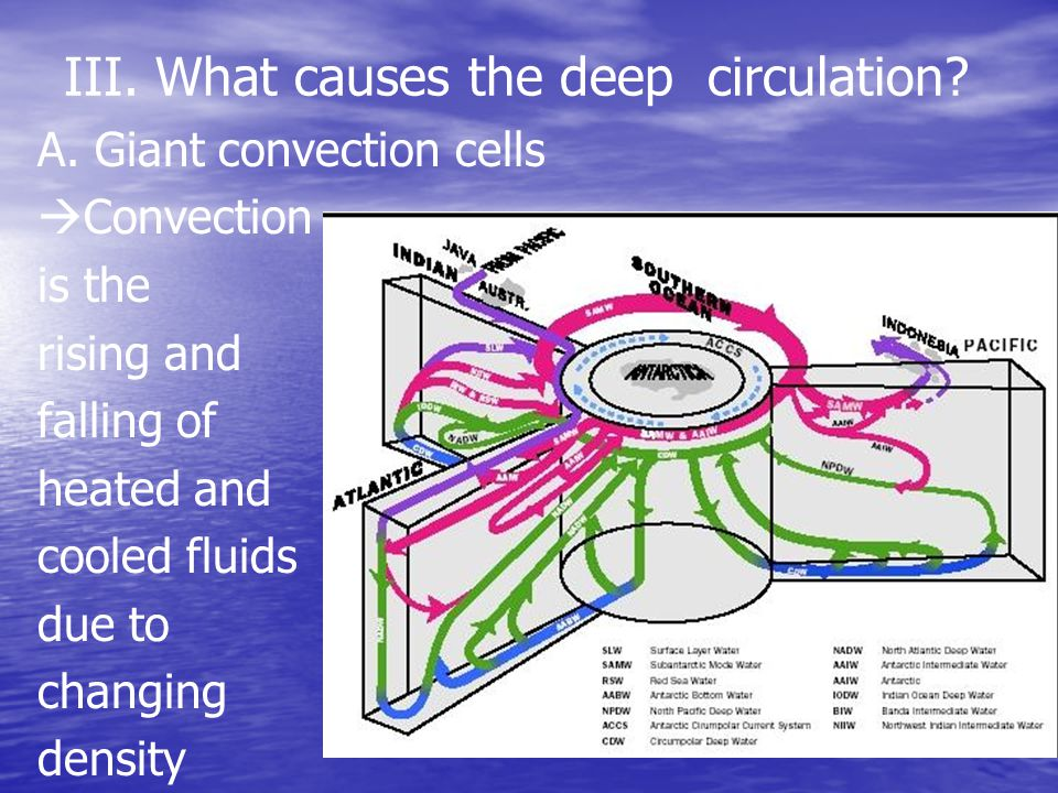 III. What causes the deep circulation? A. Giant convection cells  Convection is the rising and falling of heated and cooled fluids due to changing de