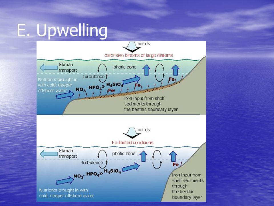 E. Upwelling