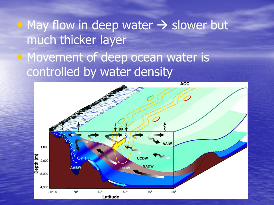 May flow in deep water  slower but much thicker layer Movement of deep ocean water is controlled by water density