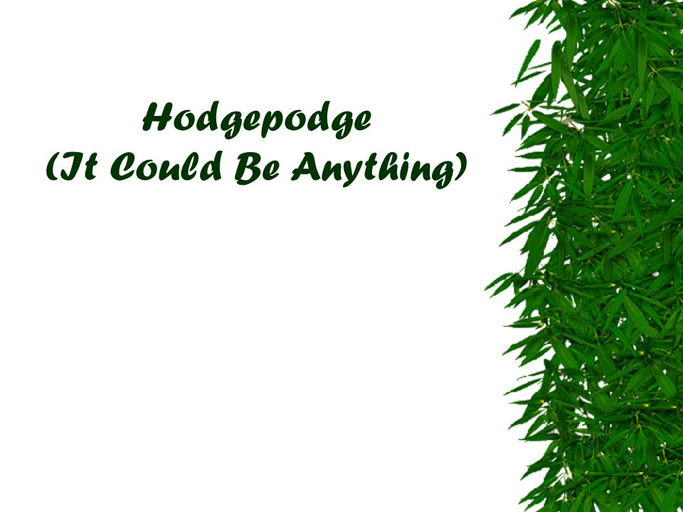 Hodgepodge (It Could Be Anything)