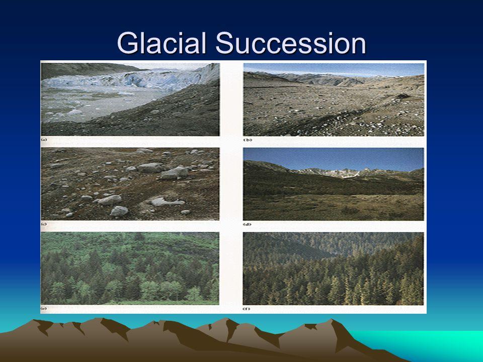 Glacial Succession
