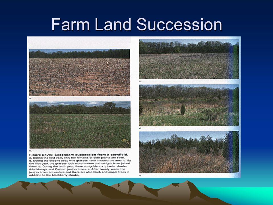 Farm Land Succession