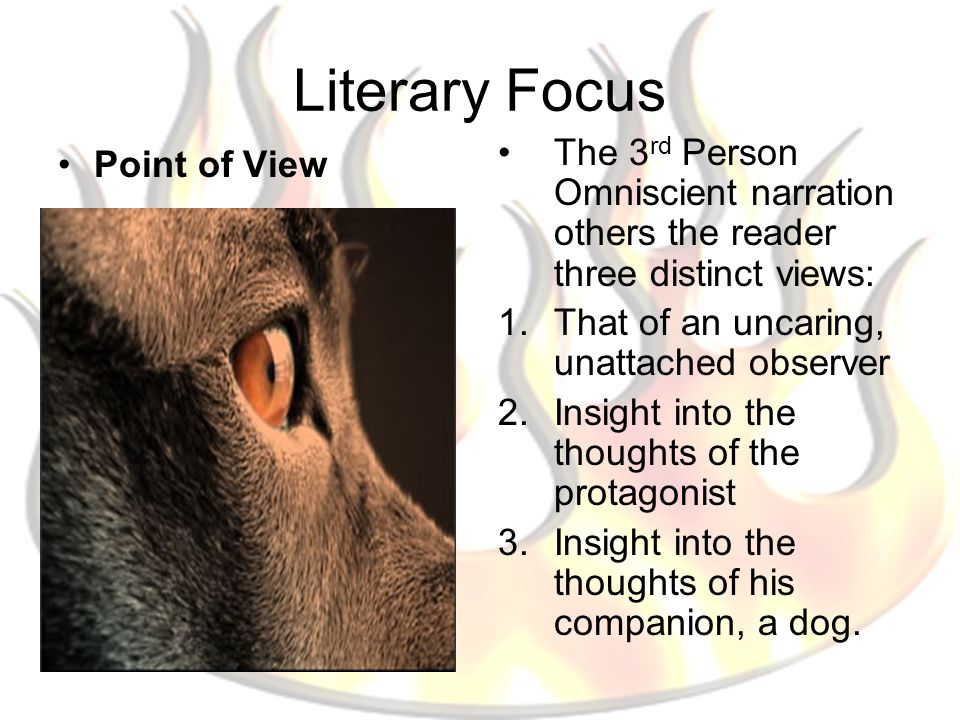 Literary Focus Point of View The 3 rd Person Omniscient narration others the reader three distinct views: 1.That of an uncaring, unattached observer 2