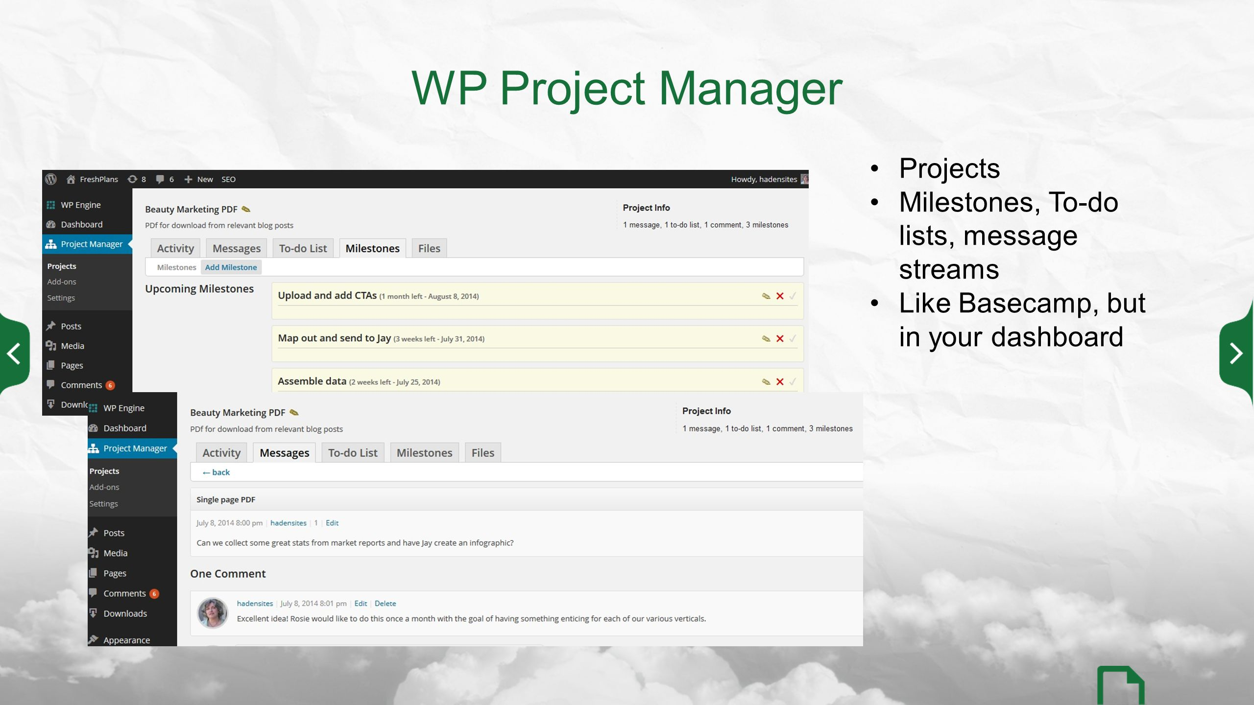 WP Project Manager Projects Milestones, To-do lists, message streams Like Basecamp, but in your dashboard