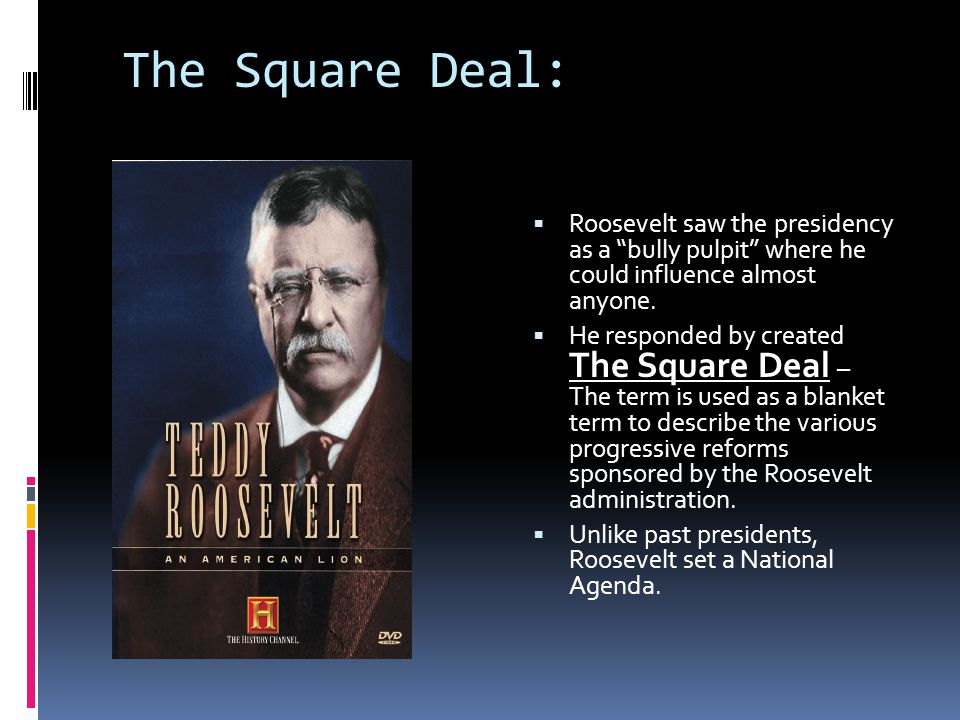 The Square Deal:  Roosevelt saw the presidency as a bully pulpit where he could influence almost anyone.