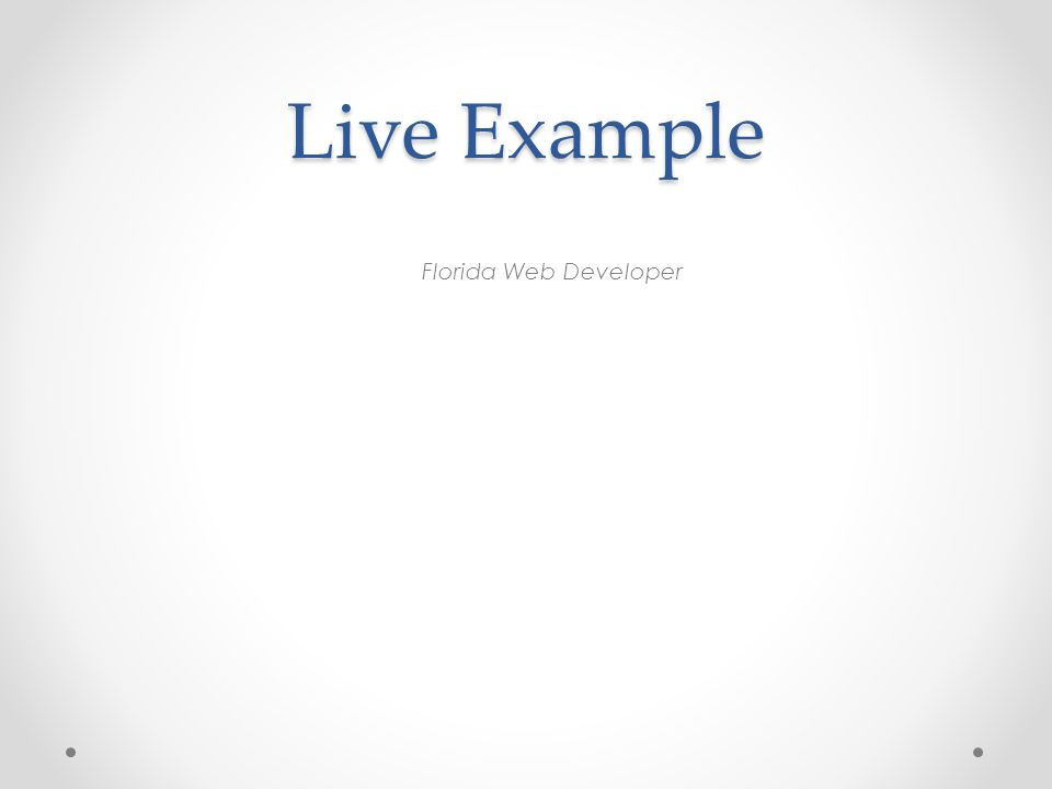 Live Example Florida Web Developer