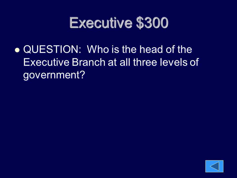 Executive $300 QUESTION: Who is the head of the Executive Branch at all three levels of government? QUESTION: Who is the head of the Executive Branch