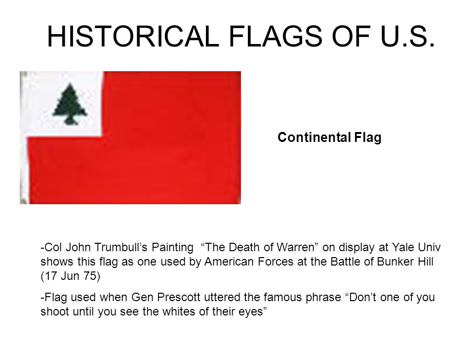 PROPER CARE AND HANDLING OF THE FLAG NEVER FASTEN, DISPLAY, USE OR STORE IN A WAY THAT WOULD DAMAGE OR DIRTY THE FLAG DISPOSE OF A FLAG THAT CAN NO LONGER BE USED (DIRTY, TORN) BY BURNING –CUT THE BLUE FIELD FROM THE FLAG –PUT THE TWO PIECES TOGETHER –BURN THE TWO PIECES IN PRIVATE