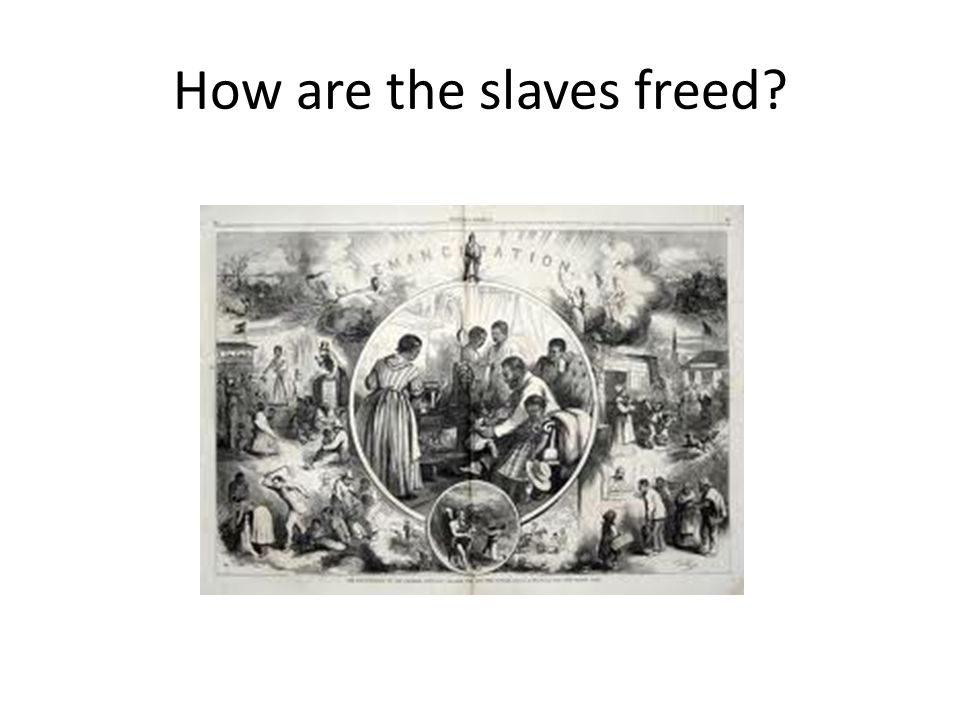 How are the slaves freed