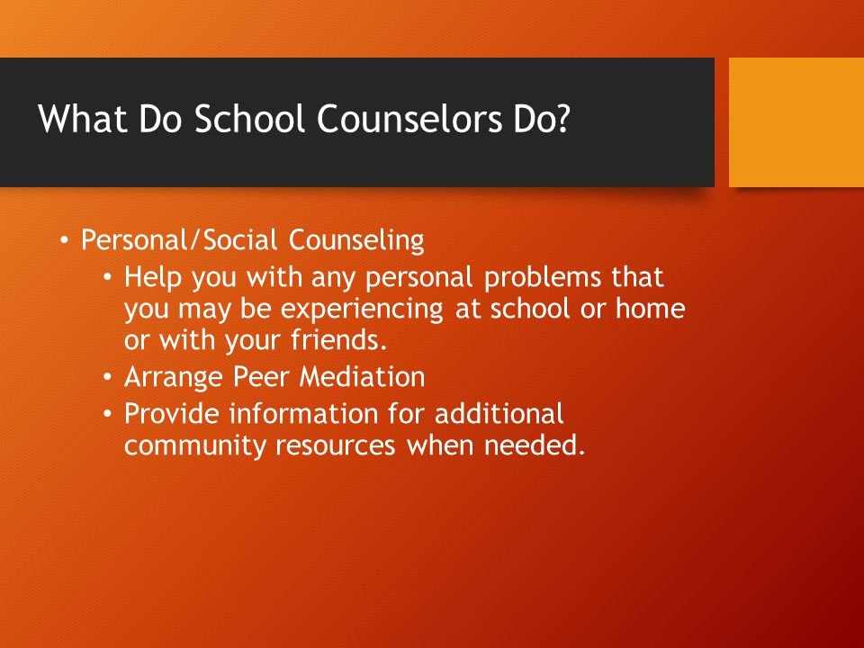 What Do School Counselors Do.