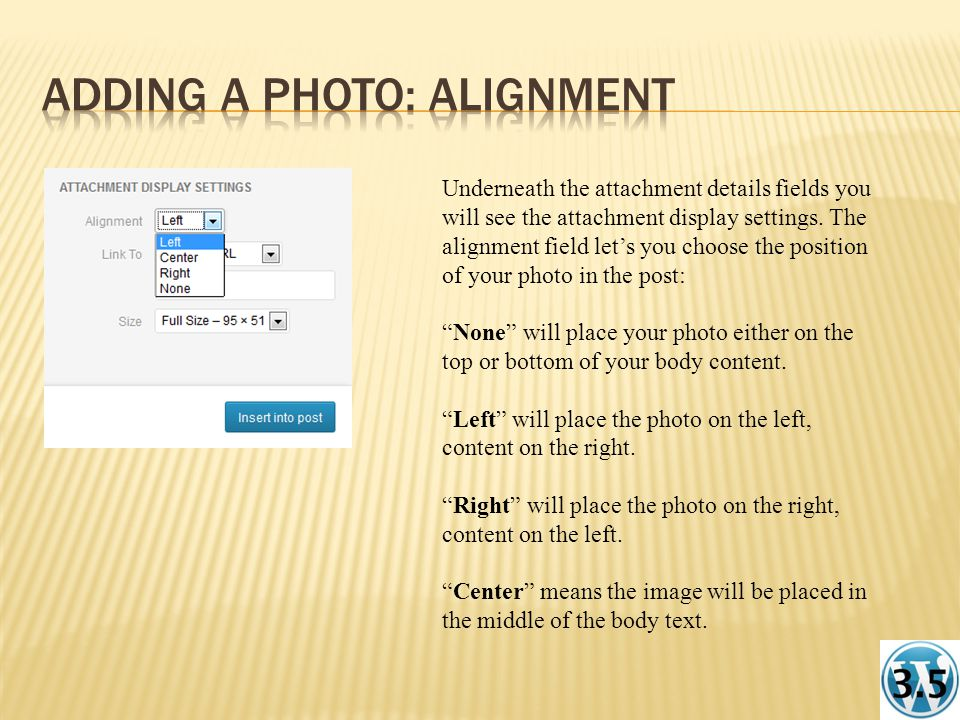 Underneath the attachment details fields you will see the attachment display settings.