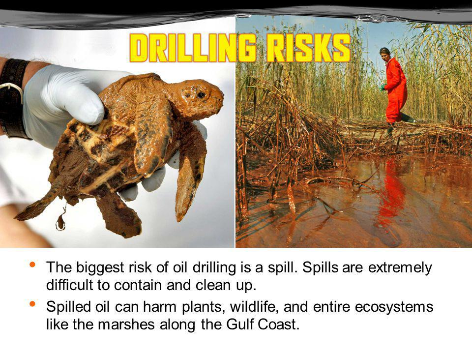 The U.S.has been drilling in the Gulf of Mexico for more than 40 years.