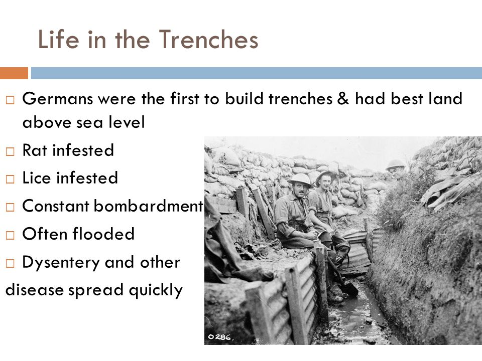 Life in the Trenches  Germans were the first to build trenches & had best land above sea level  Rat infested  Lice infested  Constant bombardment  Often flooded  Dysentery and other disease spread quickly