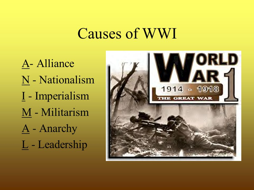 Causes of WWI A- Alliance N - Nationalism I - Imperialism M - Militarism A - Anarchy L - Leadership