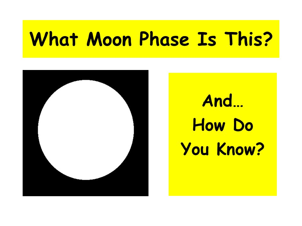 What Moon Phase Is This? And… How Do You Know?
