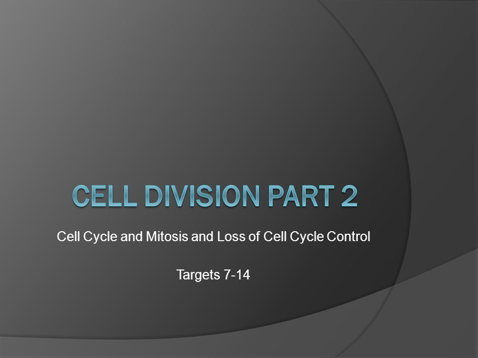 A cell cycle is: the regular sequence of growth and division that cells undergo.