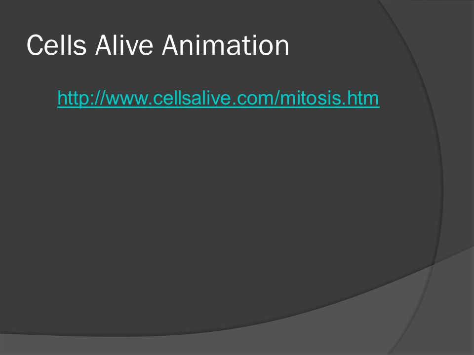 Cells Alive Animation http://www.cellsalive.com/mitosis.htm