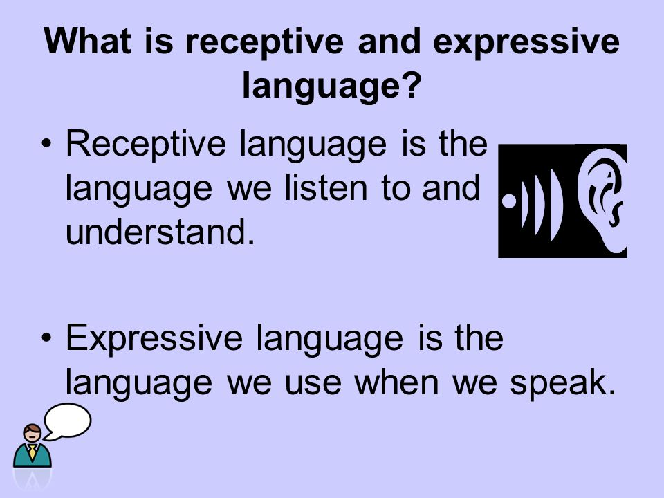 What is receptive and expressive language.