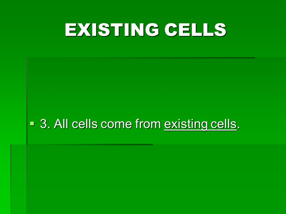What is Mitosis? It is cell division