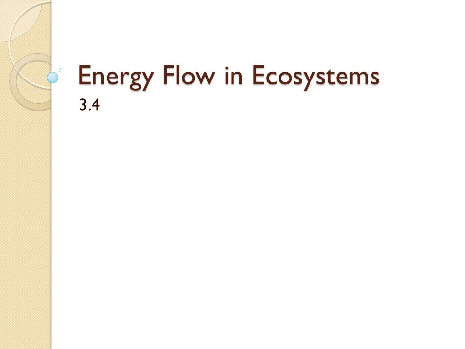 Energy Flow in Ecosystems 3.4