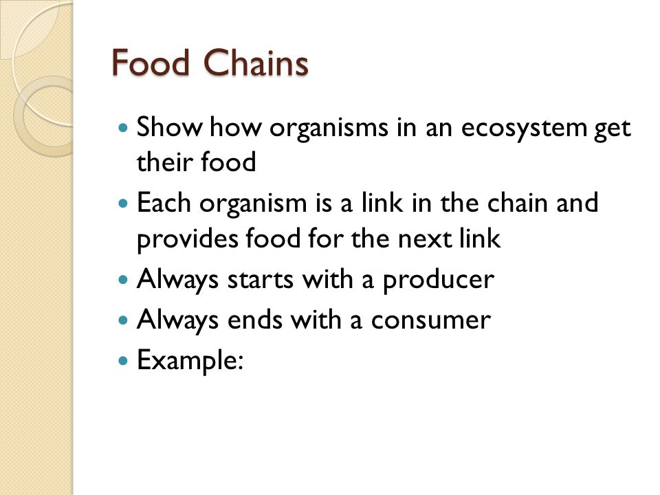 Food Chains Show how organisms in an ecosystem get their food Each organism is a link in the chain and provides food for the next link Always starts with a producer Always ends with a consumer Example: