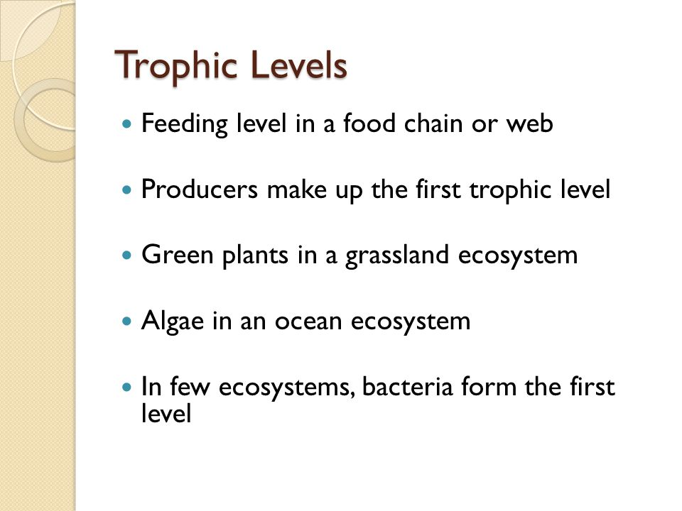 Trophic Levels Feeding level in a food chain or web Producers make up the first trophic level Green plants in a grassland ecosystem Algae in an ocean ecosystem In few ecosystems, bacteria form the first level